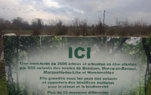 600 enfants plantent des arbres sur le site du SIGAL